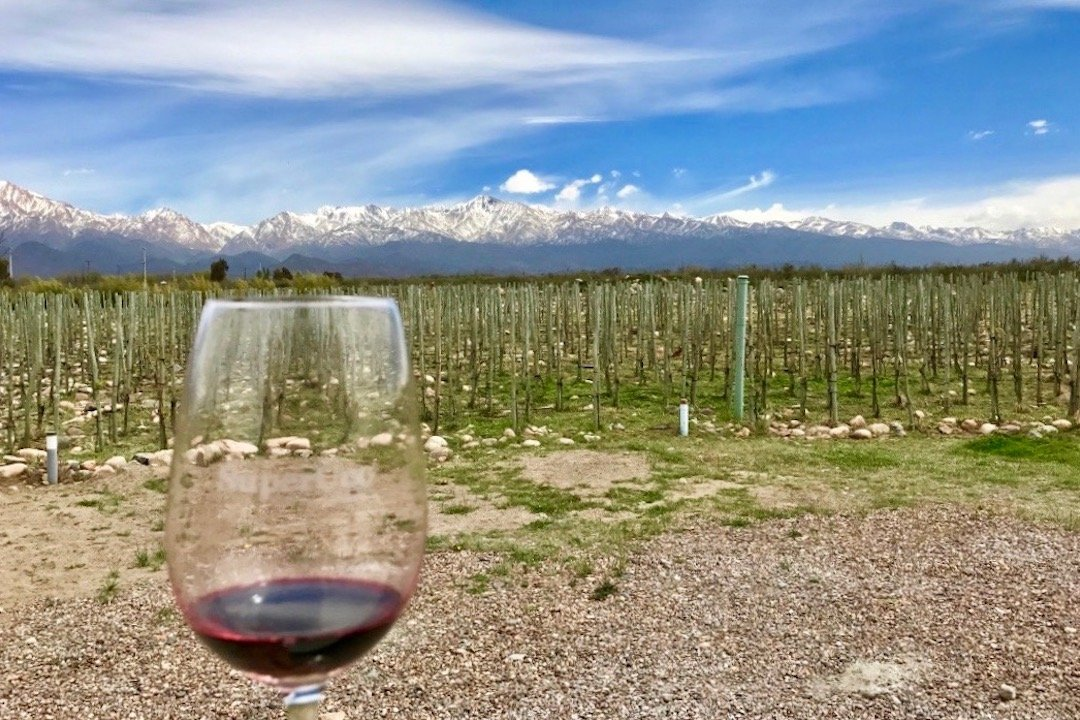 Glass of Malbec with vineyard and Andes views behind