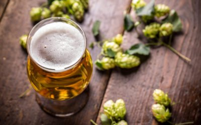 IPA: Beer that Knows How to Have a Hoppin' Good Time