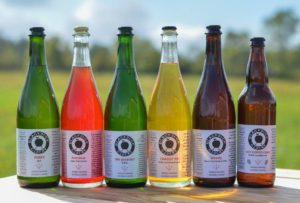 Lineup of Blackduck Cidery Bottles
