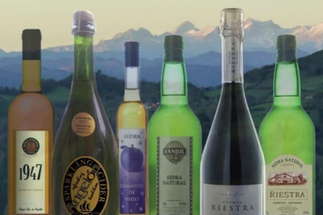 Image of bottles that ciders of spain imports on a mountain backdrop