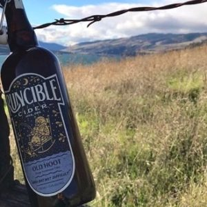 Runcible Old Hoot Cider Leaning on a fence with a field and mountains in the background