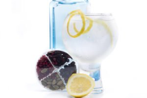 a gin and tonic with botanicals of that gin shown