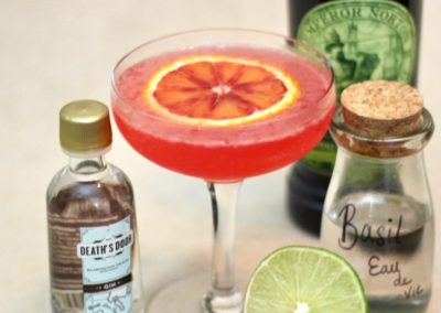 Citrus Sophisticate Blood Orange Gin Cocktail