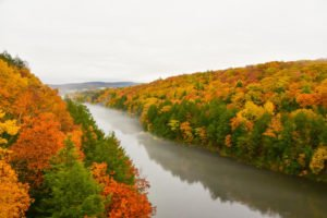 Gorgeous fall foliage on both sides of a river with overcast skies