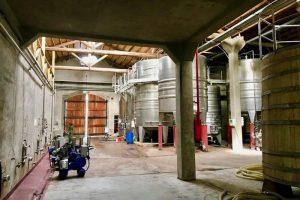 winemaking concrete tanks – stainless steel tanks – oak barrels