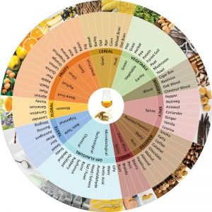 How To Taste Whiskey – a whiskey wheel for nosing and tasting