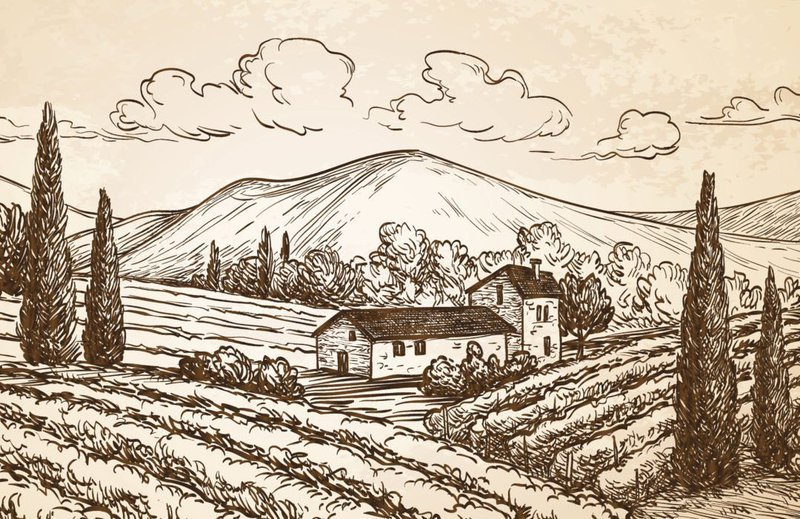 Argentinian wine history