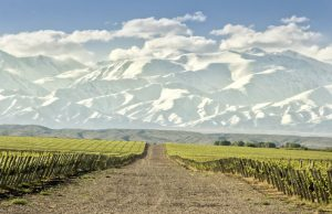 argentinian wine regions and country