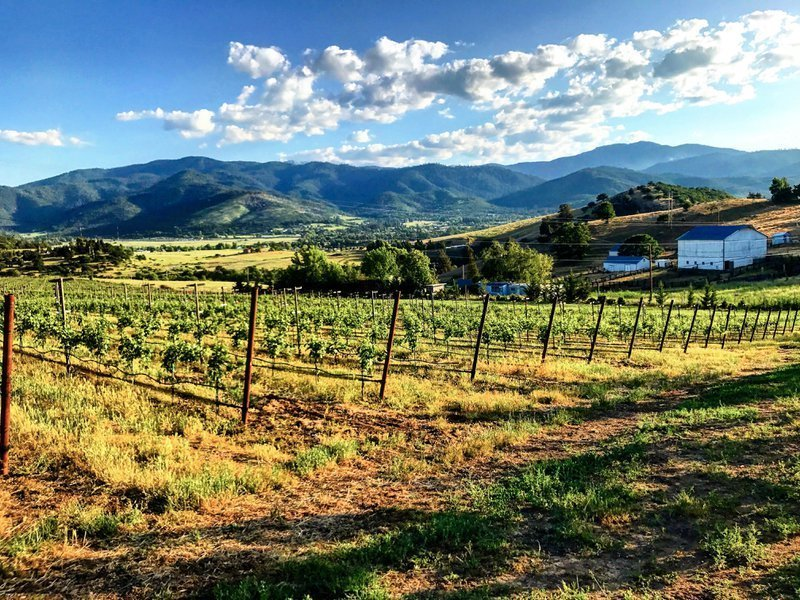 Rogue Valley Wine Region