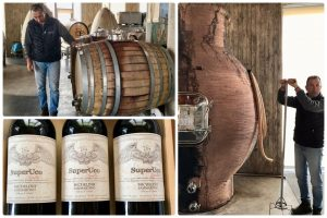visiting mendoza wineries – best winery in argentina
