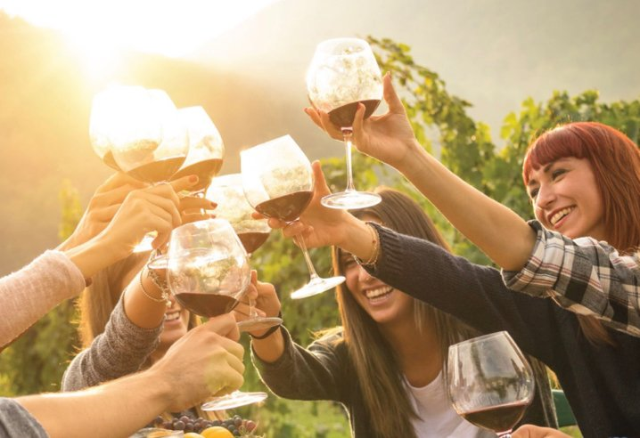 Group of friends raising wine glasses together